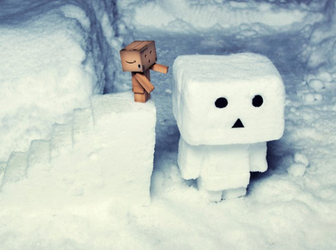 Wall-E and Danbo photography